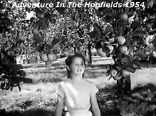 Hopfields 1954
