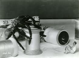 The Incredible Shrinking Man 2
