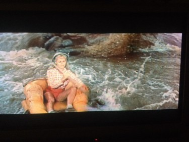 Janet Leigh at the waterfall 2