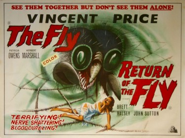 The Fly Double Bill