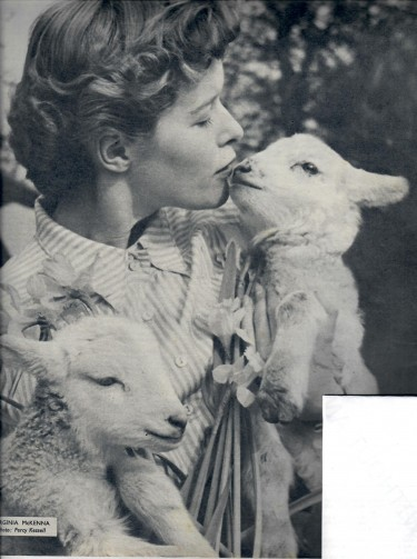 Virginia McKenna with Lambs