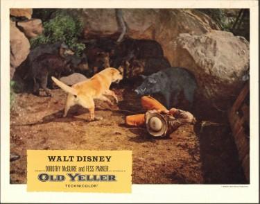 Old Yeller 11
